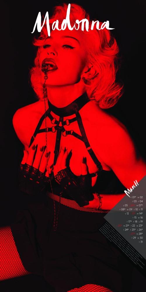 Madonna  : Calendrier 2016