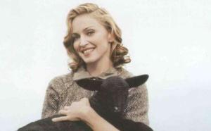 Madonna pourrait être membre de l'UE